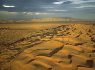 el-gran-desierto